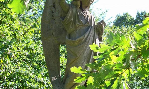 HOPKINS, John – angel